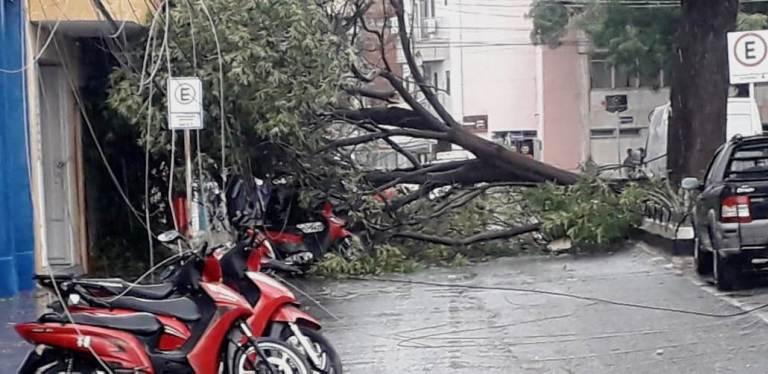 Fortes chuvas causam vários estragos no centro de Patos